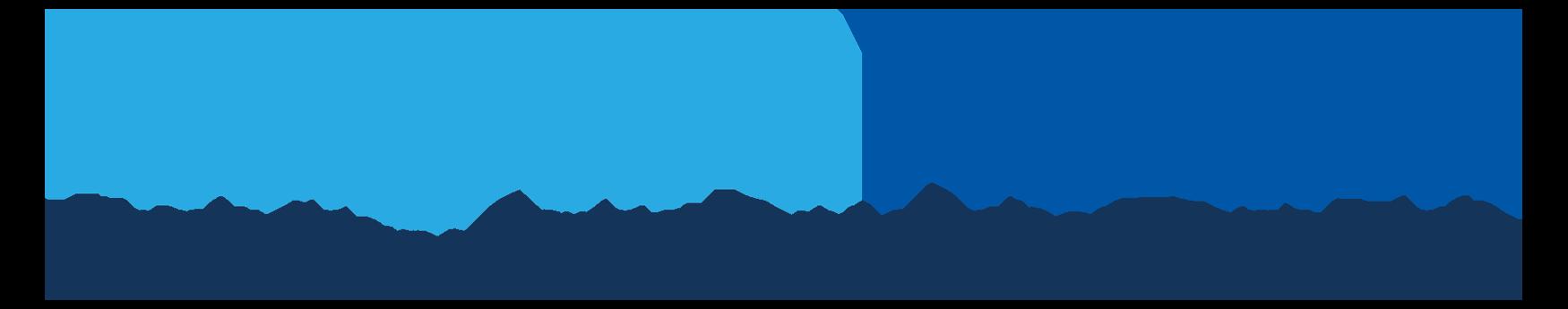 Niagara Health logo